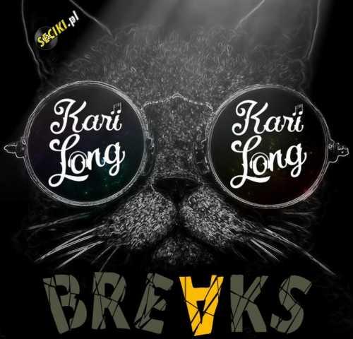 Kari Long Mix [Breaks Music]